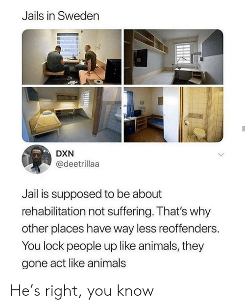 Thats Why: Jails in Sweden  DXN  @deetrillaa  Jail is supposed to be about  rehabilitation not suffering. That's why  other places have way less reoffenders.  You lock people up like animals, they  gone act like animals He's right, you know