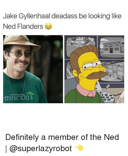 Jake Gyllenhaal: Jake Gyllenhaal deadass be looking like  Ned Flanders  HET  MOES  mirand0 Definitely a member of the Ned | @superlazyrobot 👈