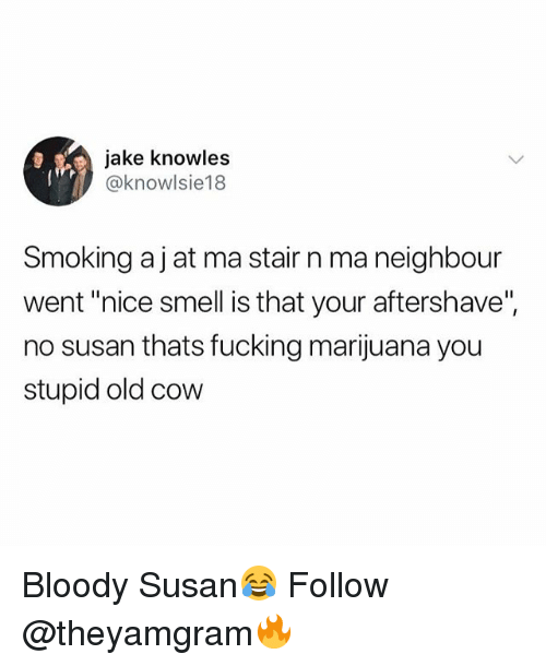 "Fucking, Smell, and Smoking: jake knowles  @knowlsie18  Smoking aj at ma stair n ma neighbour  went ""nice smell is that your aftershave"",  no susan thats fucking marijuana you  stupid old cow Bloody Susan😂 Follow @theyamgram🔥"