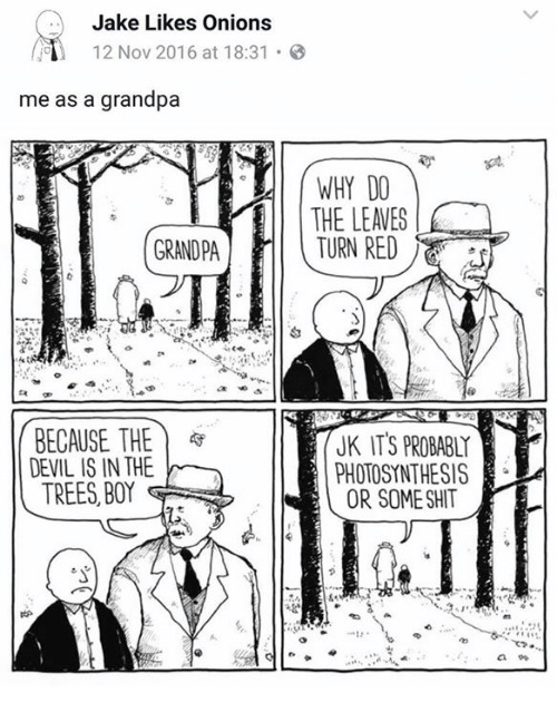 Jake Likes Onions: Jake Likes Onions  12 Nov 2016 at 18:31  me as a grandpa  WHYDO  THE LEAVES  GRANDPA  tx OP  BECAUSE THE )  DEVIL IS IN THE  TREES, BOY  JK IT'S PROBABLY  PHOTOSYNTHESIS  e  OR SOMESHIT  8