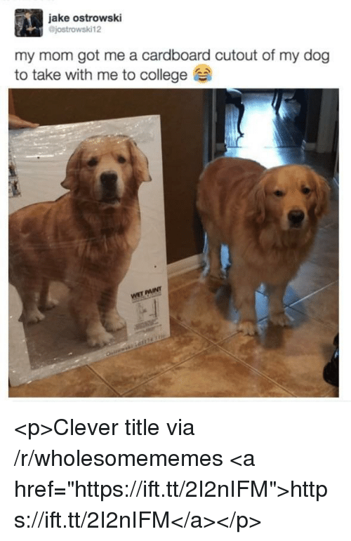 "Cutout: jake ostrowski  jostrowski12  my mom got me a cardboard cutout of my dog  to take with me to college <p>Clever title via /r/wholesomememes <a href=""https://ift.tt/2I2nIFM"">https://ift.tt/2I2nIFM</a></p>"