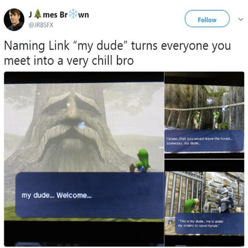 "Chill, Dude, and Link: JAmes Br wn  Follow  @JRBSFX  Naming Link ""my dude"" turns everyone you  meet into a very chill bro  T knew..that you would teave the forest..  someday, my dude..  my dude...Welcome...  This is my dude. He is under  my orders to save Hyrule."