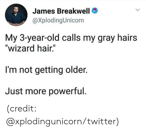 """Dank, Twitter, and Hair: James Breakwell  @XplodingUnicorn  My 3-year-old calls my gray hairs  """"wizard hair.""""  I'm not getting older.  Just more powerful. (credit: @xplodingunicorn/twitter)"""