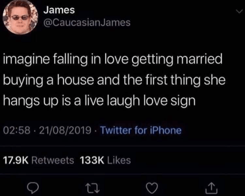 Iphone, Love, and Memes: James  @CaucasianJames  imagine falling in love getting married  buying a house and the first thing she  hangs up is a live laugh love sign  02:58 21/08/2019 Twitter for iPhone  17.9K Retweets 133K Likes
