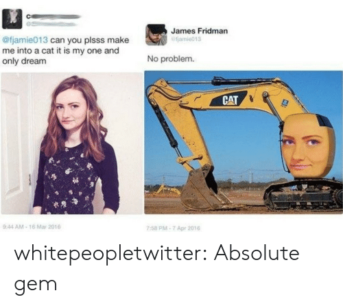 Tumblr, Blog, and Cat: James Fridman  fjamie013  @fjamie013 can you plsss make  me into a cat it is my one and  only dream  No problem  CAT  0  944 AM-16 Mar 201  7:58 PM-7 Apr 2016 whitepeopletwitter:  Absolute gem