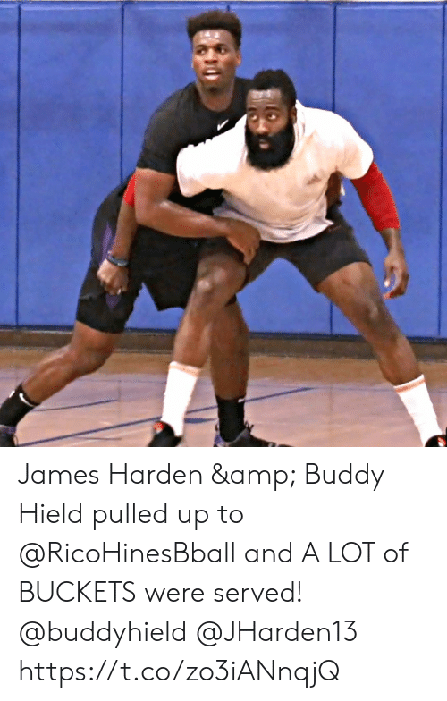 James Harden, Memes, and 🤖: James Harden & Buddy Hield pulled up to @RicoHinesBball and A LOT of BUCKETS were served! @buddyhield @JHarden13 https://t.co/zo3iANnqjQ