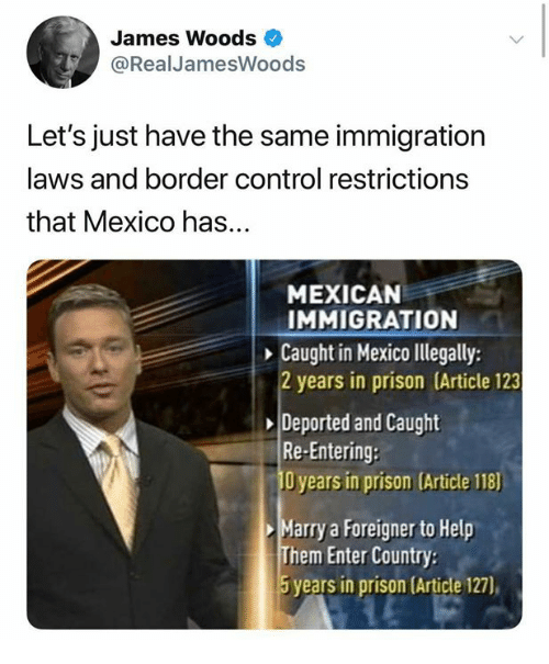 foreigner: James Woods  @RealJamesWoods  Let's just have the same immigration  laws and border control restrictions  that Mexico has...  MEXICAN  IMMIGRATION  Caught in Mexico lllegally:  2 years in prison (Article 123  Deported and Caught  Re-Entering:  O years in prison (Article 118)  Marry a Foreigner to Help  Them Enter Country  5 years in prison (Article 127),