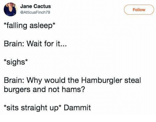 "Dammits: Jane Cactus  AtticusFinch79  Follow  ""falling asleep*  Brain: Wait for it.  sighs*  Brain: Why would the Hamburgler steal  burgers and not hams?  sits straight up* Dammit"