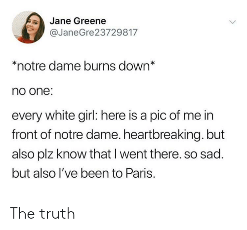 White Girl, Girl, and Notre Dame: Jane Greene  @JaneGre23729817  *notre dame burns down*  no one:  every white girl: here is a pic of me in  front of notre dame. heartbreaking. but  also plz know that I went there. so sad.  but also l've been to Paris. The truth