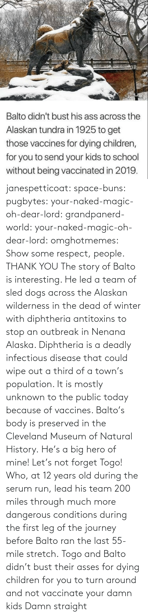 Of Mine: janespetticoat: space-buns:  pugbytes:   your-naked-magic-oh-dear-lord:  grandpanerd-world:   your-naked-magic-oh-dear-lord:  omghotmemes: Show some respect, people.  THANK YOU   The story of Balto is interesting. He led a team of sled dogs across the Alaskan wilderness in the dead of winter with diphtheria antitoxins to stop an outbreak in Nenana Alaska. Diphtheria is a deadly infectious disease that could wipe out a third of a town's population. It is mostly unknown to the public today because of vaccines. Balto's body is preserved in the Cleveland Museum of Natural History.   He's a big hero of mine!   Let's not forget Togo! Who, at 12 years old during the serum run, lead his team 200 miles through much more dangerous conditions during the first leg of the journey before Balto ran the last 55-mile stretch.   Togo and Balto didn't bust their asses for dying children for you to turn around and not vaccinate your damn kids    Damn straight