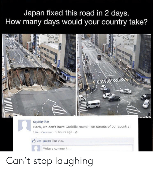 Bitch, Godzilla, and Streets: Japan fixed this road in 2 days.  How many days would your country take?  Squishy Rex  Bitch, we don't have Godzilla roamin' on streets of our country!  Like Comment 5 hours ago  2361 people like this.  Write a comment Can't stop laughing