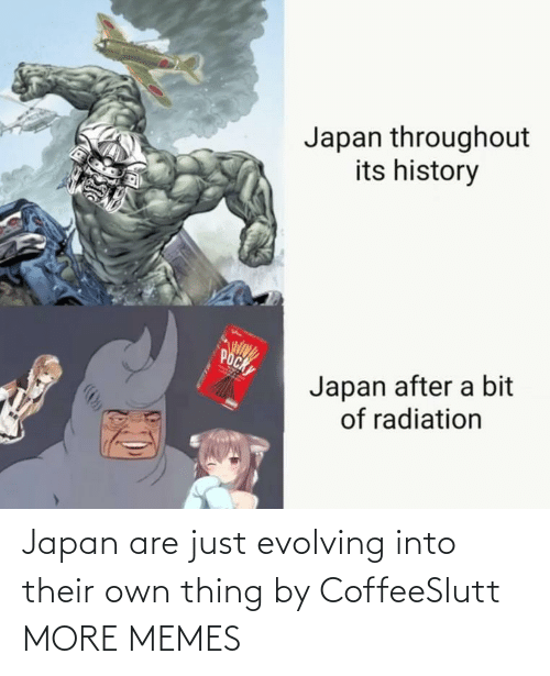 Throughout: Japan throughout  its history  POCK  Japan after a bit  of radiation Japan are just evolving into their own thing by CoffeeSlutt MORE MEMES