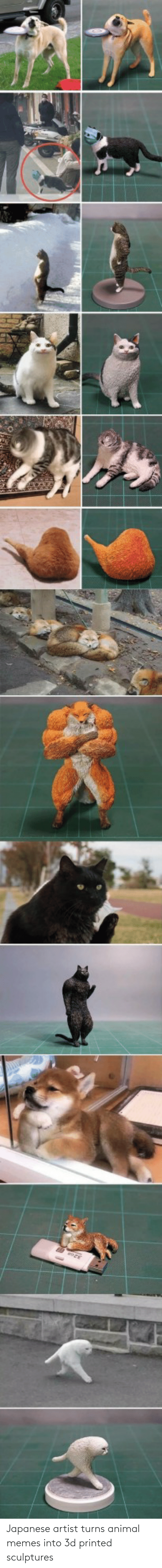 Animal: Japanese artist turns animal memes into 3d printed sculptures