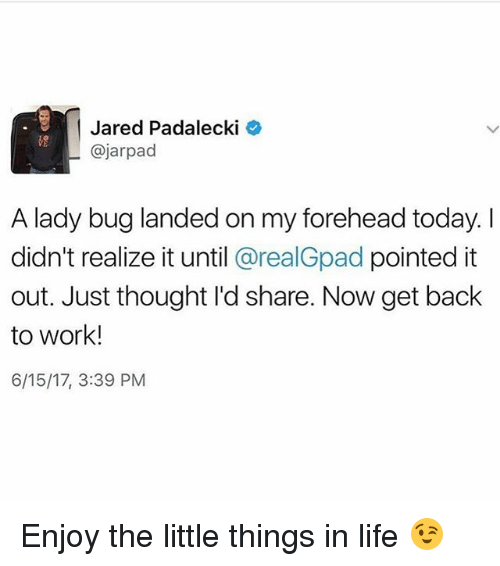 Jared Padalecki: Jared Padalecki  @jarpad  A lady bug landed on my forehead today. I  didn't realize it until @realGpad pointed it  out. Just thought I'd share. Now get back  to work!  6/15/17, 3:39 PM Enjoy the little things in life 😉