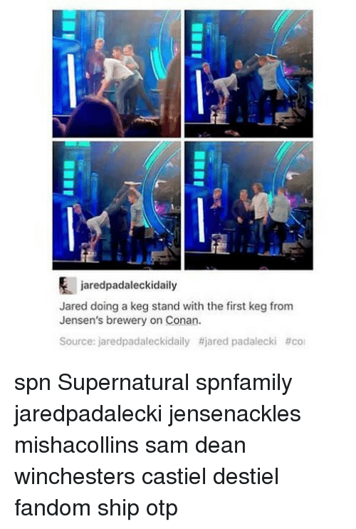 Memes, Jared, and Supernatural: jaredpadaleckidaily  Jared doing a keg stand with the first keg from  Jensen's brewery on Conan.  Source: jaredpadaleckidaily #jared padalecki spn Supernatural spnfamily jaredpadalecki jensenackles mishacollins sam dean winchesters castiel destiel fandom ship otp