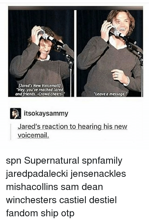 jareds: Jared's New VoicemaU  'Hey, youve reached Jared  and friends. Crowd cheers  Leave a messoge.  itsokay sammy  Jared's reaction to hearing his new  voicemail. spn Supernatural spnfamily jaredpadalecki jensenackles mishacollins sam dean winchesters castiel destiel fandom ship otp