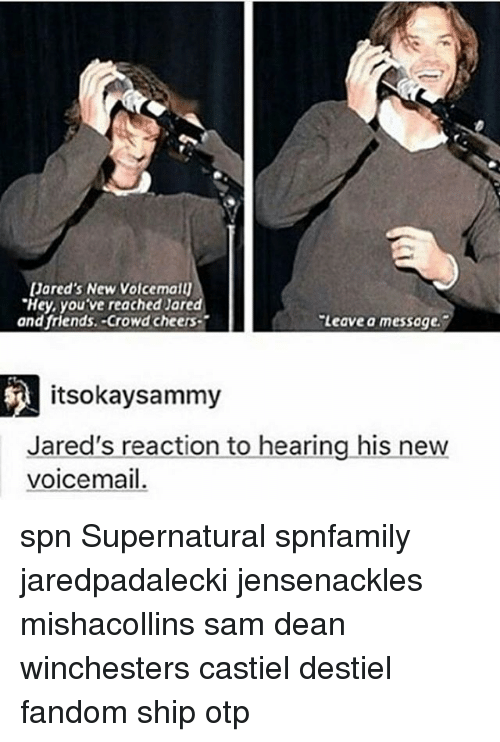 "jareds: Jared's New Voldemalu  ""Hey, you've reached Jared  and friends. Crowd cheers T  Leave a message.  itsokaysammy  Jared's reaction to hearing his new  voicemail. spn Supernatural spnfamily jaredpadalecki jensenackles mishacollins sam dean winchesters castiel destiel fandom ship otp"