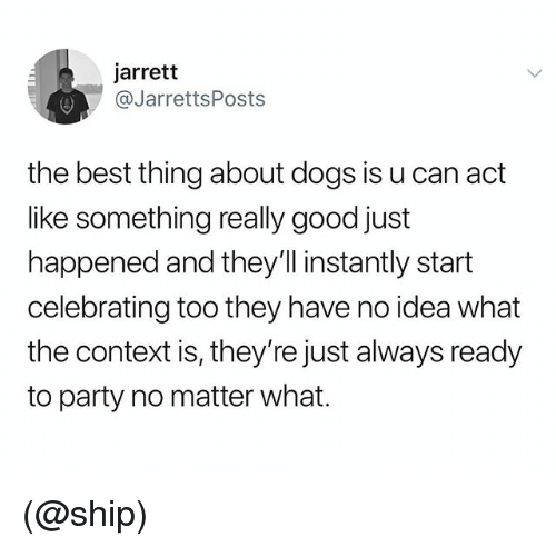 Dogs, Party, and Best: jarrett  @JarrettsPosts  the best thing about dogs is u can act  like something really good just  happened and they'll instantly start  celebrating too they have no idea what  the context is, they're just always ready  to party no matter what. (@ship)