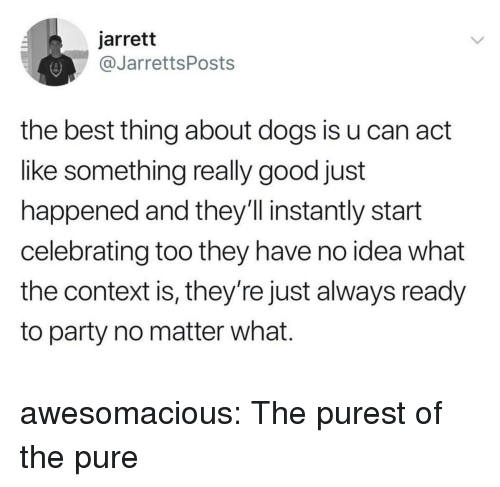 Dogs, Party, and Tumblr: jarrett  @JarrettsPosts  the best thing about dogs is u can act  like something really good just  happened and they'll instantly start  celebrating too they have no idea what  the context is, they're just always ready  to party no matter what. awesomacious:  The purest of the pure