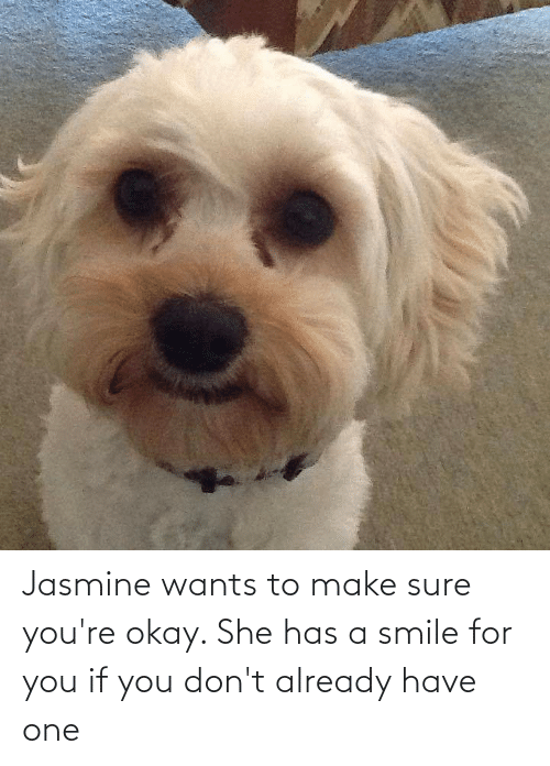 jasmine: Jasmine wants to make sure you're okay. She has a smile for you if you don't already have one