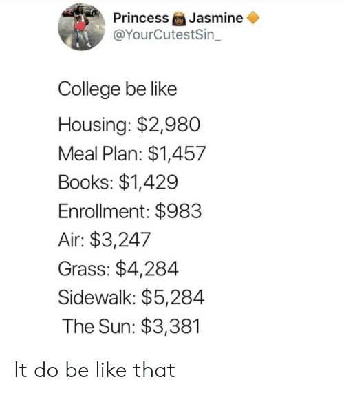 jasmine: Jasmine  @YourCutestSin_  Princess  College be like  Housing: $2,980  Meal Plan: $1,457  Books: $1,429  Enrollment: $983  Air: $3,247  Grass: $4,284  Sidewalk: $5,284  The Sun: $3,381 It do be like that