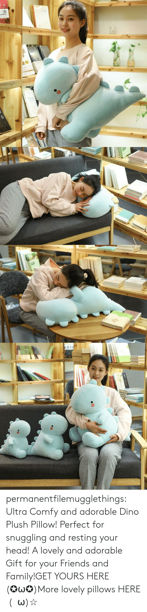 Family, Friends, and Head: JD  三论  laint  orld  TDNAR  ww.e permanentfilemugglethings:  Ultra Comfy and adorable Dino Plush Pillow! Perfect for snuggling and resting your head! A lovely and adorable Gift for your Friends and Family!GET YOURS HERE (✪ω✪)More lovely pillows HERE  (・ω)☆
