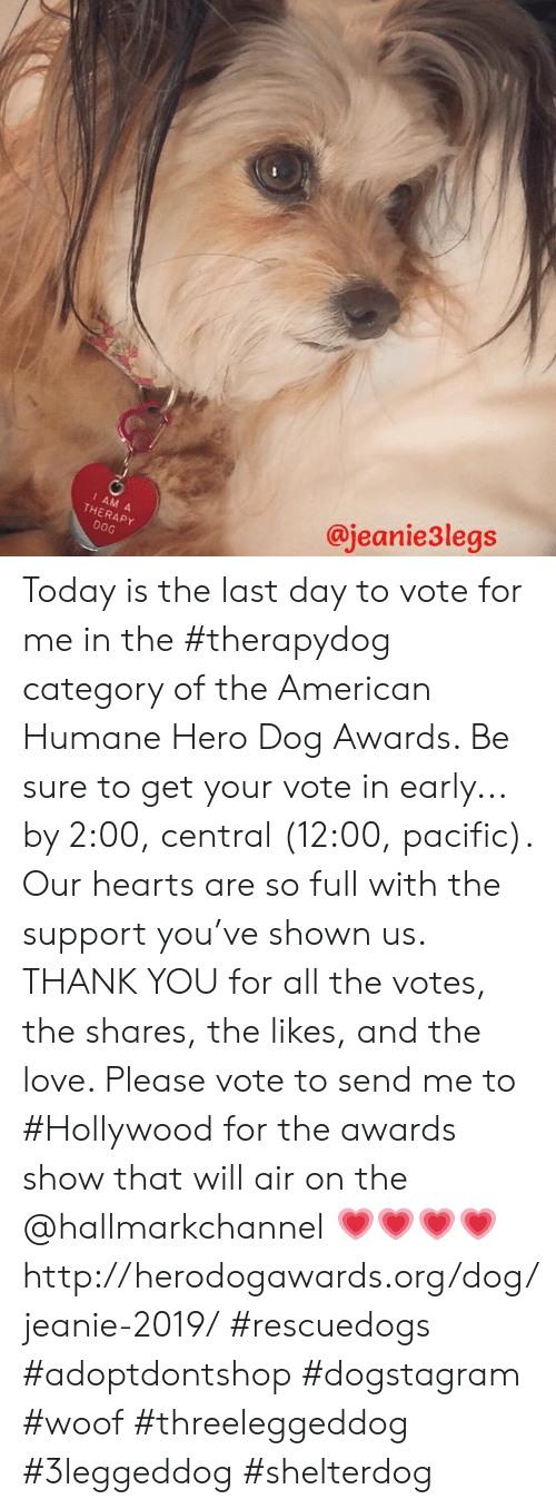 Hallmarkchannel: @jeanie3legs  I AM A  THERAPY  DOG Today is the last day to vote for me in the #therapydog category of the American Humane Hero Dog Awards. Be sure to get your vote in early... by 2:00, central (12:00, pacific).   Our hearts are so full with the support you've shown us. THANK YOU for all the votes, the shares, the likes, and the love.   Please vote to send me to #Hollywood for the awards show that will air on the @hallmarkchannel 💗💗💗💗 http://herodogawards.org/dog/jeanie-2019/  #rescuedogs #adoptdontshop  #dogstagram #woof  #threeleggeddog #3leggeddog #shelterdog
