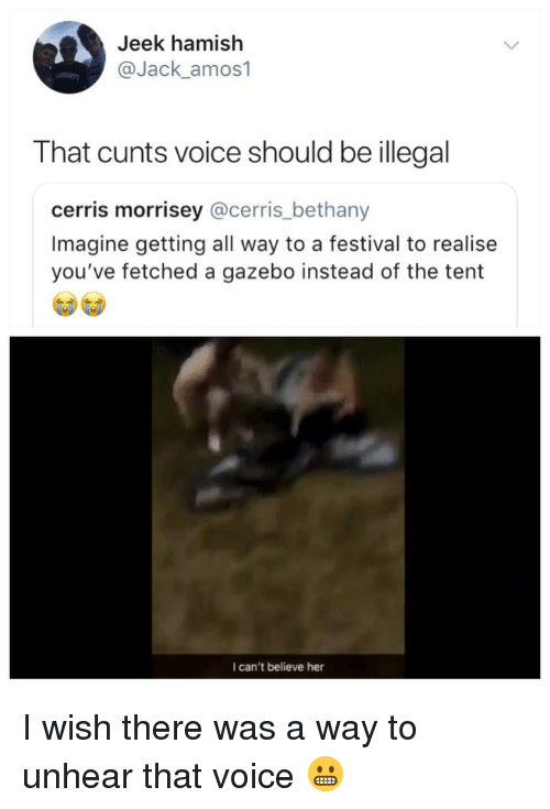 gazebo: Jeek hamish  @Jack_amos1  That cunts voice should be illegal  cerris morrisey @cerris_bethany  Imagine getting all way to a festival to realise  you've fetched a gazebo instead of the tent  I can't believe her I wish there was a way to unhear that voice 😬