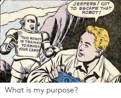 purpose: JEEPERS!GOT  TO ESCAPE THAT  ROBOT!  THIS ROBOT  IS TRAINED  TO SMASH  YOUR CAMER What is my purpose?