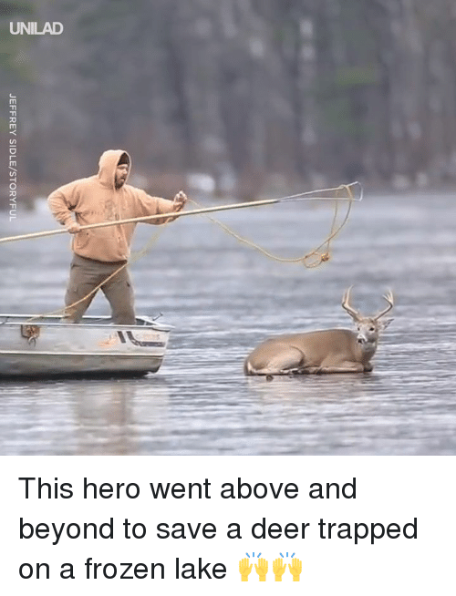 above and beyond: JEFFREY SIDLE/STORYFUL This hero went above and beyond to save a deer trapped on a frozen lake  🙌🙌