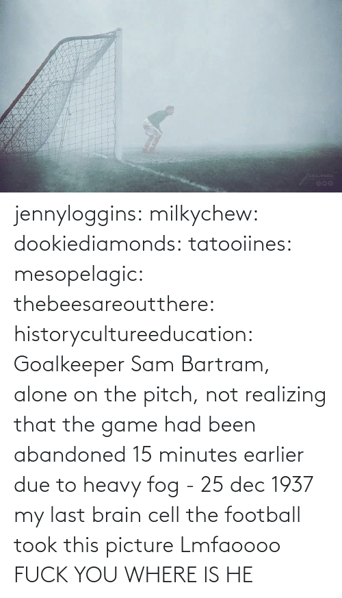 Where: jennyloggins:  milkychew: dookiediamonds:  tatooiines:   mesopelagic:  thebeesareoutthere:  historycultureeducation: Goalkeeper Sam Bartram, alone on the pitch, not realizing that the game had been abandoned 15 minutes earlier due to heavy fog - 25 dec 1937 my last brain cell   the football took this picture    Lmfaoooo      FUCK YOU WHERE IS HE