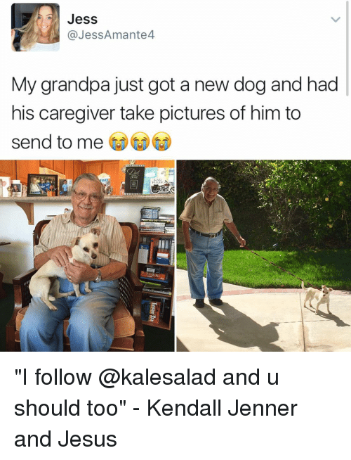"Kendall Jenner, Memes, and Grandpa: Jess  @Jess Amante  My grandpa just got a new dog and had  his caregiver take pictures of him to  send to me ""I follow @kalesalad and u should too"" - Kendall Jenner and Jesus"