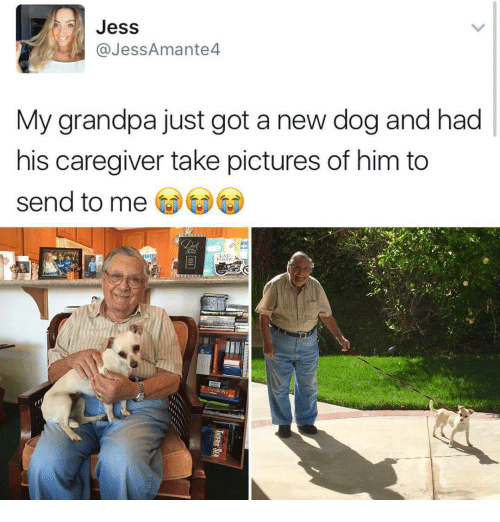 Funny, Grandpa, and Jesse: Jess  @Jess Amante  My grandpa just got a new dog and had  his caregiver take pictures of him to  send to me