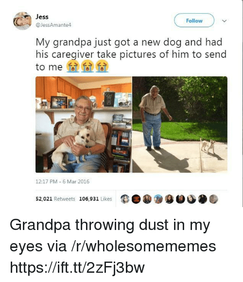 Grandpa, Pictures, and Got: Jess  @JessAmante4  Follow  My grandpa just got a new dog and had  his caregiver take pictures of him to send  to me  12:17 PM 6 Mar 2016  52,021 Retweets 106,931 Likes  9目 Grandpa throwing dust in my eyes via /r/wholesomememes https://ift.tt/2zFj3bw