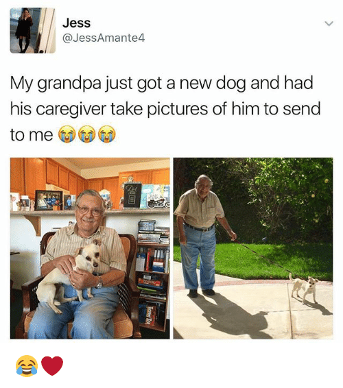 Caregiver: Jess  @JessAmante4  My grandpa just got a new dog and had  his caregiver take pictures of him to send  to me 😂❤️