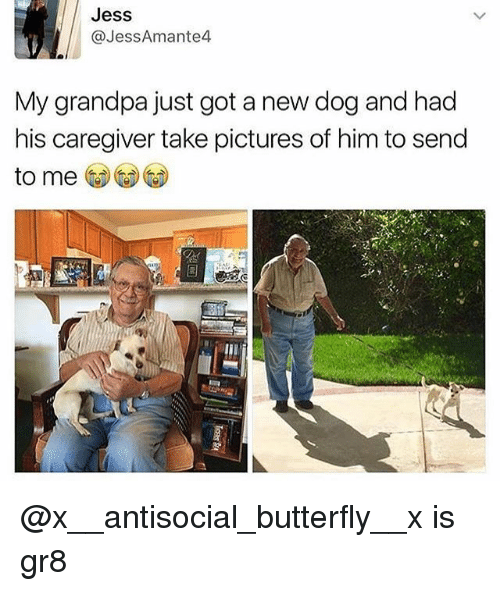 Caregiver: Jess  @JessAmante4  My grandpa just got a new dog and had  his caregiver take pictures of him to send  to me @x__antisocial_butterfly__x is gr8