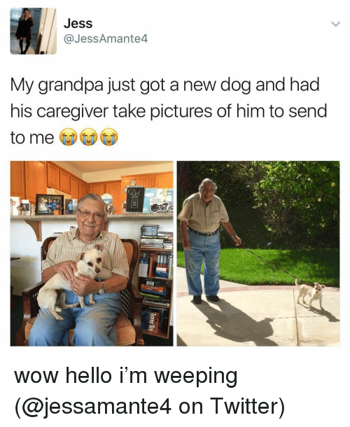 Caregiver: Jess  @JessAmante4  My grandpa just got a new dog and had  his caregiver take pictures of him to send  to me wow hello i'm weeping (@jessamante4 on Twitter)