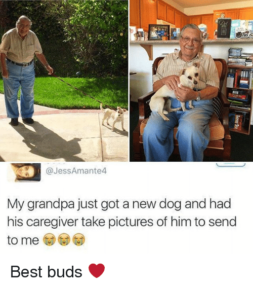 Caregiver: @JessAmante4  My grandpa just got a new dog and had  his caregiver take pictures of him to send  to me Best buds ❤️