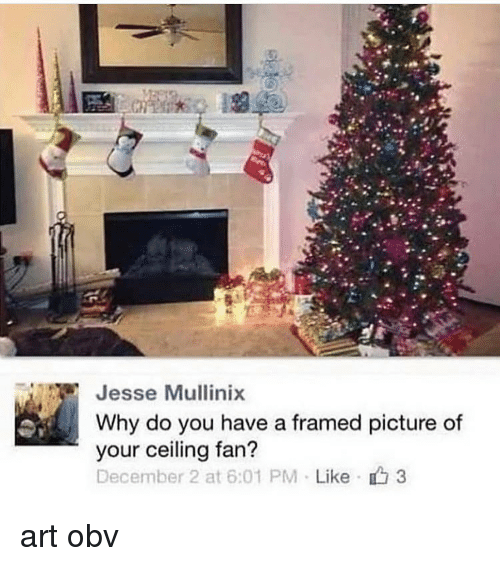 Memes, December 2, and 🤖: Jesse Mullinix  Why do you have a framed picture of  your ceiling fan?  December 2 at 6:01 PM . Like 3 art obv
