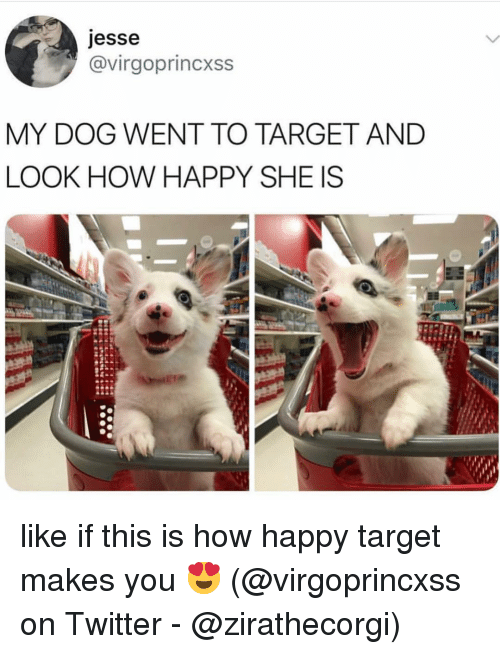 Memes, Target, and Twitter: jesse  @virgoprincxss  MY DOG WENT TO TARGET AND  LOOK HOW HAPPY SHE IS like if this is how happy target makes you 😍 (@virgoprincxss on Twitter - @zirathecorgi)