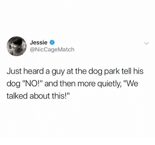 """Dog Park: Jessie  @NicCageMatch  Just heard a guy at the dog park tell his  dog """"NO!"""" and then more quietly, """"We  talked about this!"""""""