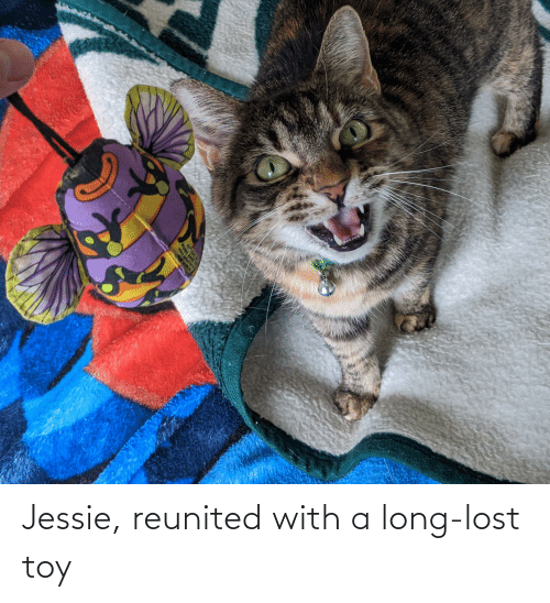 jessie: Jessie, reunited with a long-lost toy