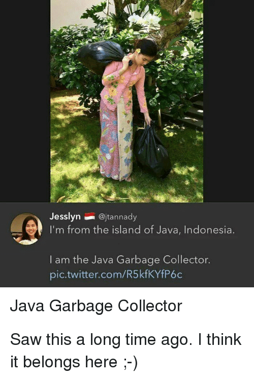 Saw, Twitter, and Indonesia: Jesslyn@jtannady  I'm from the island of Java, Indonesia  I am the Java Garbage Collector.  pic.twitter.com/R5kfKYfP6c  Java Garbage Collector Saw this a long time ago. I think it belongs here ;-)