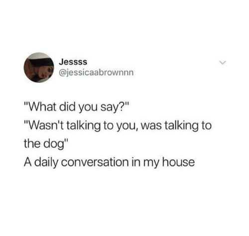 "My House, House, and Dog: Jessss  @jessicaabrownnn  ""What did you say?""  ""Wasn't talking to you, was talking to  the dog""  A daily conversation in my house"