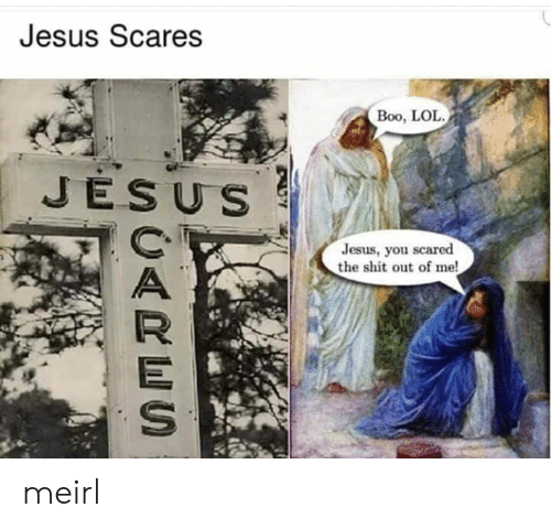 Boo, Jesus, and Lol: Jesus Scares  Boo, LOL  JESUS  Jesus, you scared  the shit out of me! meirl