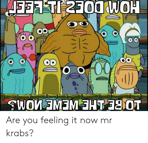 Mr. Krabs: JFT 2300WOH  0)  WOW EMEMHT 0T Are you feeling it now mr krabs?