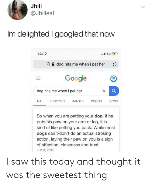 Dogs, Google, and News: Jhill  @Jhilleaf  Im delighted I googled that now  14:12  4G  dog hits me when i pet her  Google  dog hits me when i pet her  ALL  SHOPPING  IMAGES  VIDEOS  NEWS  So when you are petting your dog, if he  puts his paw on your arm or leg, it is  kind of like petting you back. While most  dogs can't/don't do an actual stroking  action, laying their paw on you is a sign  of affection, closeness and trust.  Jun 3, 2018  X I saw this today and thought it was the sweetest thing
