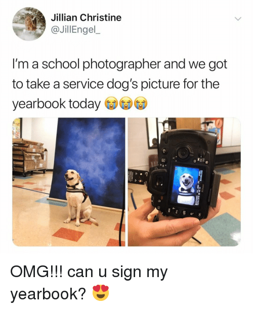 Dogs, Omg, and School: Jillian Christine  JilEngel  l'm a school photographer and we got  to take a service dog's picture for the  yearbook today OMG!!! can u sign my yearbook? 😍