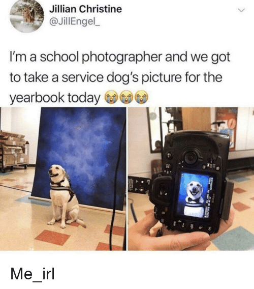 Dogs, School, and Today: Jillian Christine  JillEngel  I'm a school photographer and we got  to take a service dog's picture for the  yearbook today Me_irl