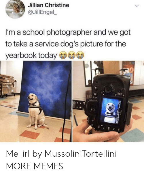 Dank, Dogs, and Memes: Jillian Christine  JillEngel  I'm a school photographer and we got  to take a service dog's picture for the  yearbook today Me_irl by MussoIiniTorteIIini MORE MEMES